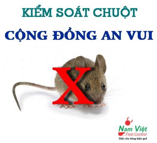 Dịch vụ kiểm soát chuột giá rẻ ở Hồ Chí Minh