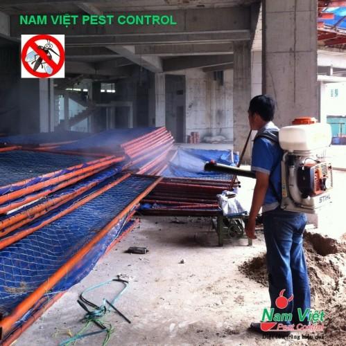 Phun diệt muỗi cho công trình xây dựng hiệu quả cao tại Tp Hồ Chí Minh